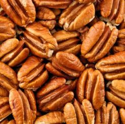 Norton Pecan Tree