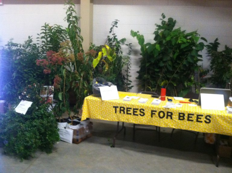 Rock Bridge Trees will be going to bee school again