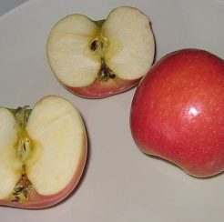 Cripps Pink Apple